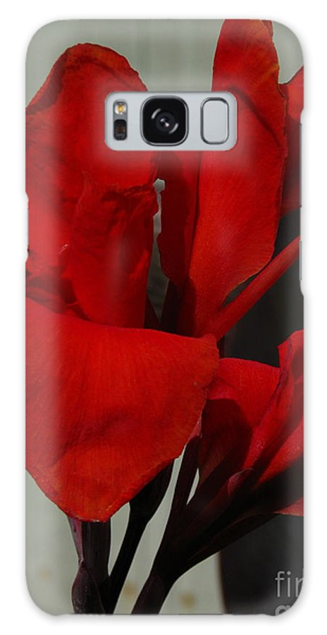 Patzer Galaxy S8 Case featuring the photograph Canna by Greg Patzer