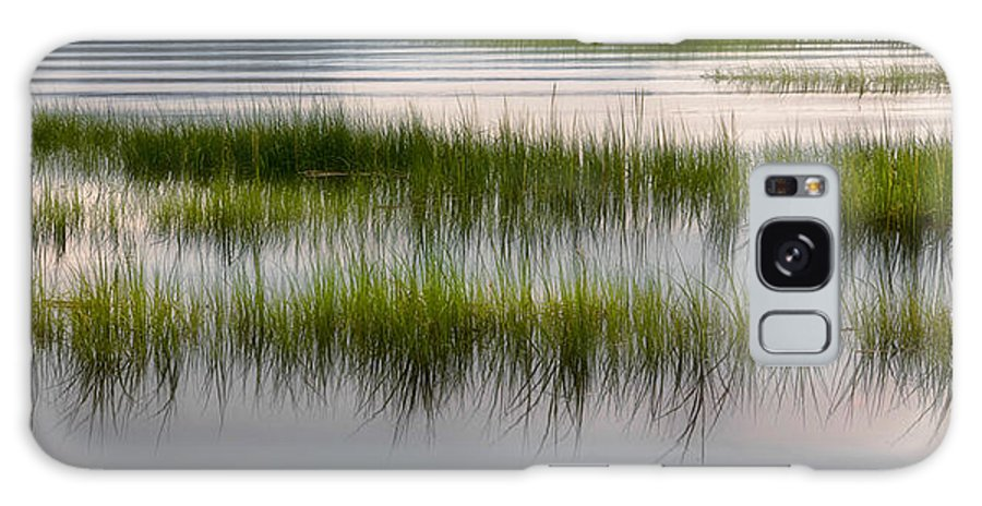 Marsh Galaxy S8 Case featuring the photograph Cape Cod Marsh by Bill Wakeley