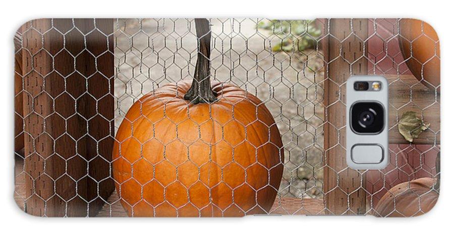 Captive Pumpkins Galaxy S8 Case featuring the photograph Captive Pumpkins by Victoria Harrington