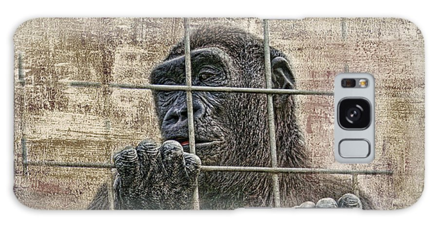 Gorilla Galaxy S8 Case featuring the photograph Captivity by Tom Mc Nemar