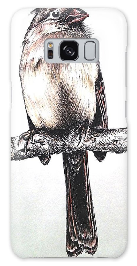 Ink Sketch Galaxy S8 Case featuring the drawing Cardinal Female by Katharina Filus