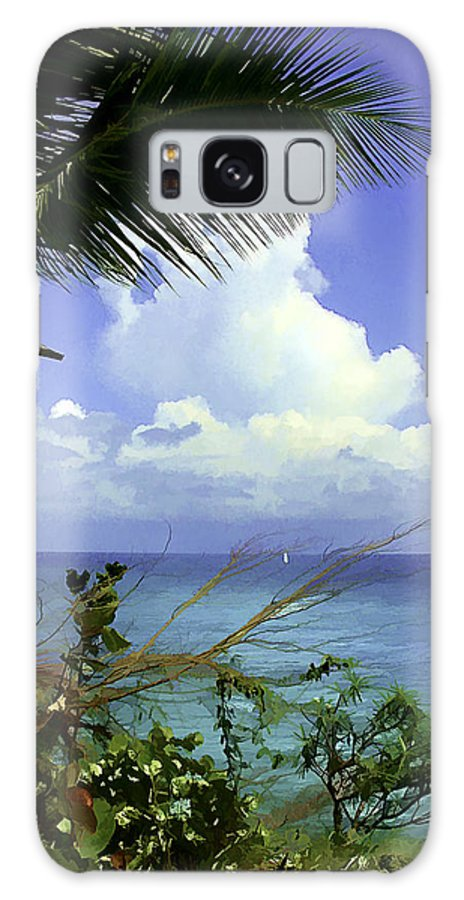 Caribbean Galaxy S8 Case featuring the photograph Caribbean Day by Julie Palencia