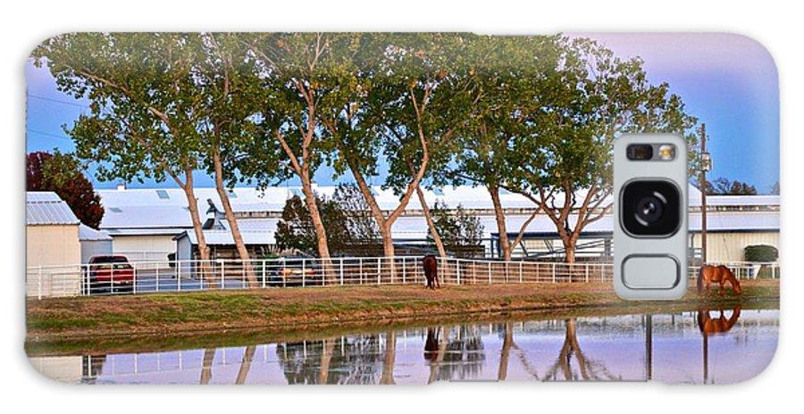 Galaxy S8 Case featuring the photograph Carol Rose Ranch by Ricardo J Ruiz de Porras