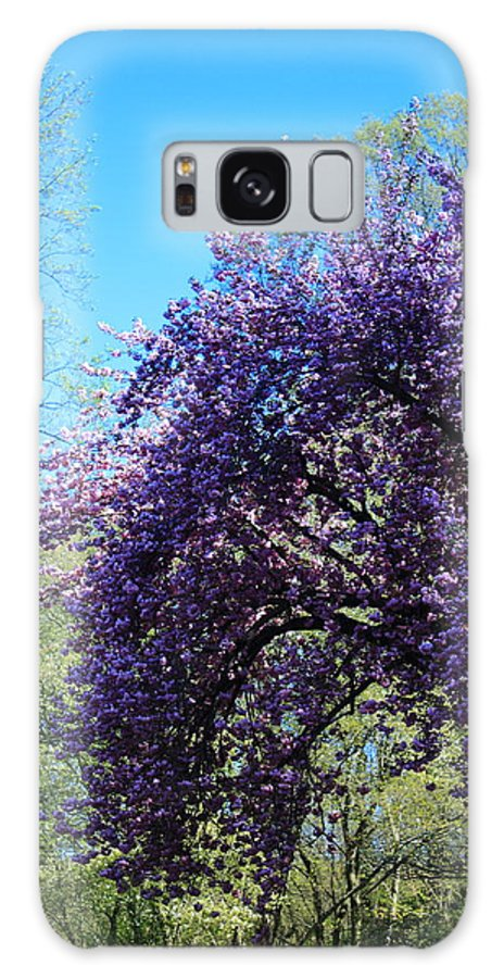Tree Galaxy S8 Case featuring the photograph Cascading Flowers by Stephen Hobbs