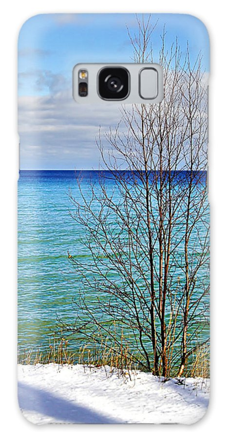 Door County Galaxy S8 Case featuring the photograph Cave Point County Park Door County by Carol Toepke