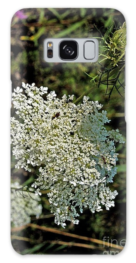 Cedar River Galaxy S8 Case featuring the photograph Cedar Flower One by Joseph Yarbrough
