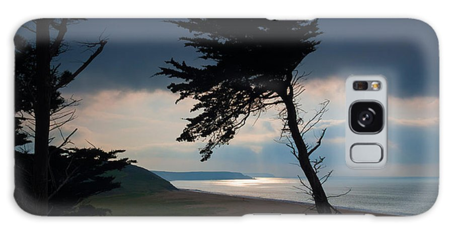 Loe Bar Galaxy S8 Case featuring the photograph Cedar Silhouettes by Louise Heusinkveld