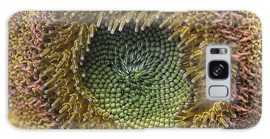 Sunflowers Galaxy S8 Case featuring the photograph Center Of The Sunflower by Yumi Johnson