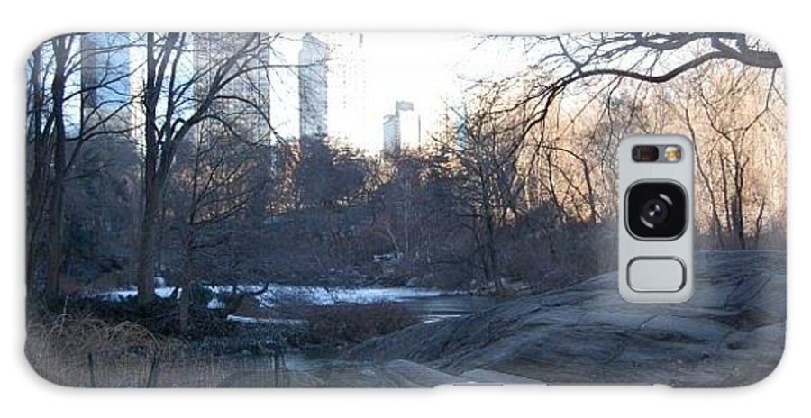 New York Galaxy S8 Case featuring the photograph Central Park Winter Skyline by Fran Wild