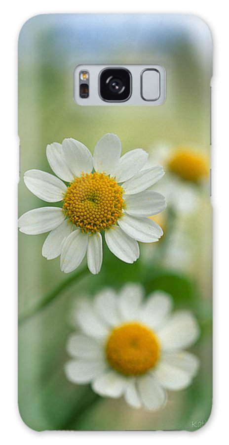 Floral Galaxy S8 Case featuring the photograph Chamomile by Kathy Yates
