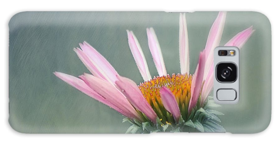 Flower Galaxy S8 Case featuring the photograph Change by Kim Hojnacki