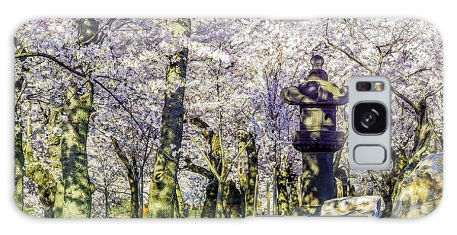 Cherry Galaxy S8 Case featuring the photograph Cherry Blossoms 2014. by John Jack