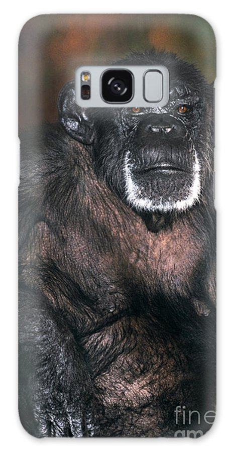 Chimpanzee Galaxy S8 Case featuring the photograph Chimpanzee Portrait Endangered Species Wildlife Rescue by Dave Welling