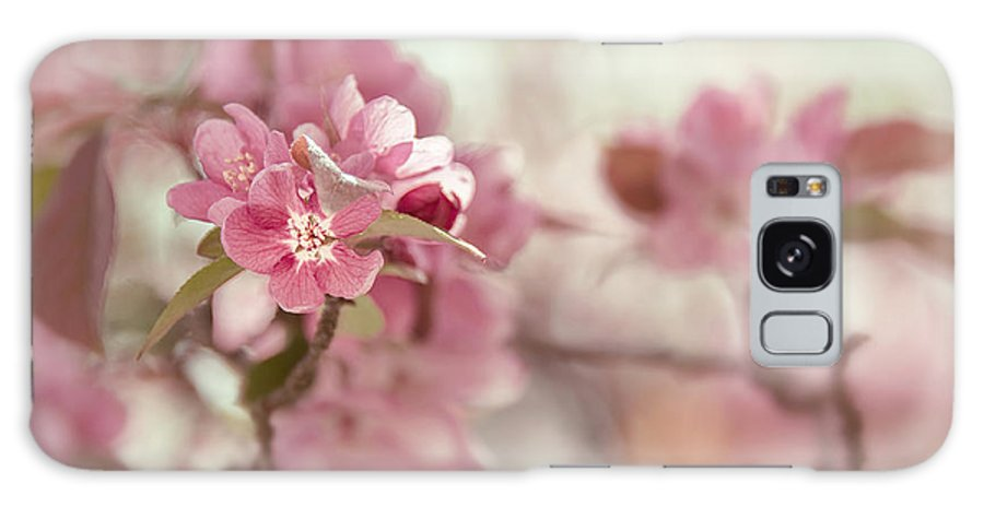 Crabapple Galaxy S8 Case featuring the photograph Chintz by Mary OMalley