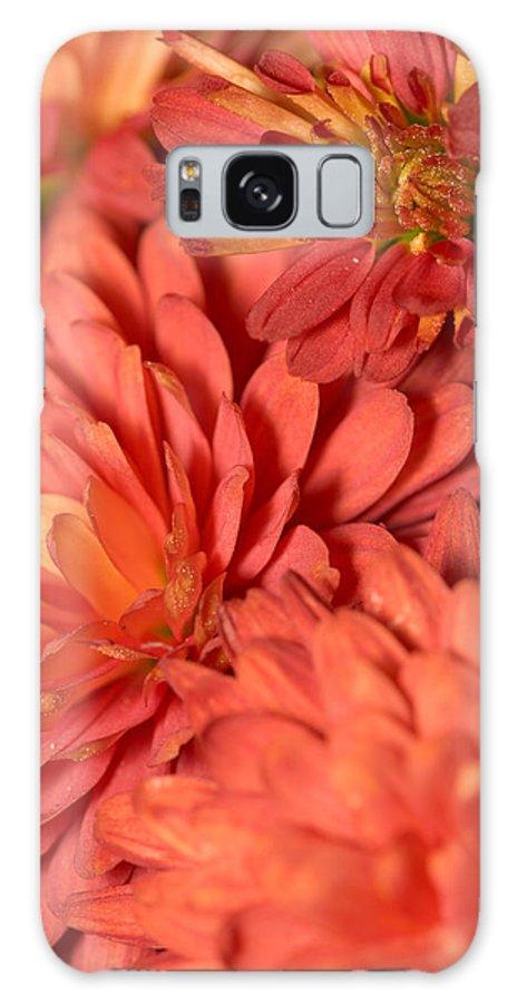 Red Galaxy S8 Case featuring the photograph Chrysanthemum by Bernard Lynch