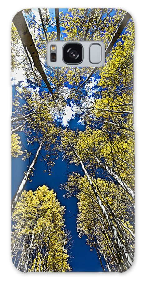 Aspen Galaxy S8 Case featuring the photograph Circle Of Aspen by David Kehrli
