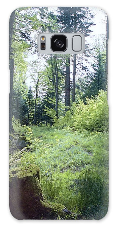 Clearing Galaxy S8 Case featuring the photograph Clearing In Spring by Patrick Kessler