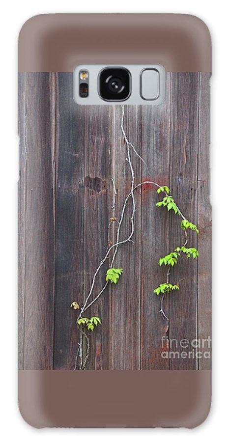 Barn Galaxy S8 Case featuring the photograph Climbing The Wall by Ann Horn