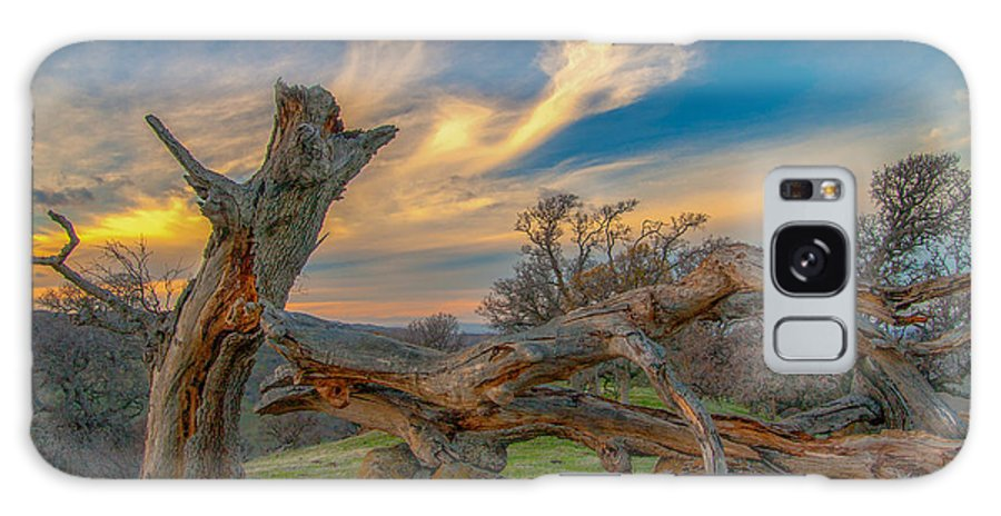 Landscape Galaxy S8 Case featuring the photograph Clouds Over Broken Tree At Sunset by Marc Crumpler