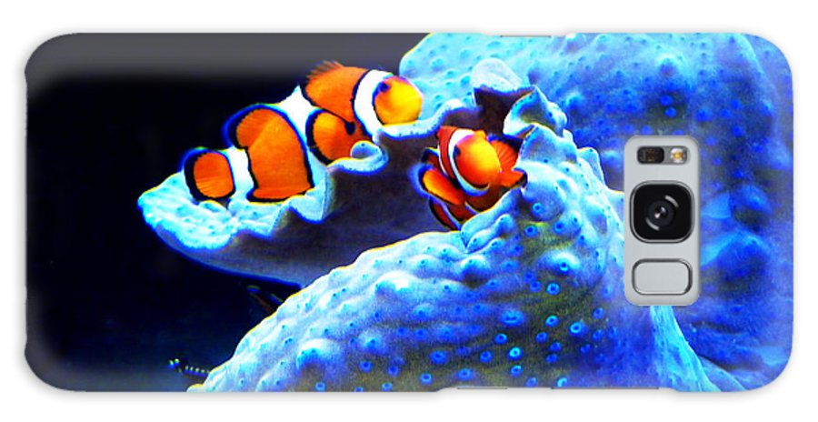 Galaxy S8 Case featuring the photograph Clown Fish by Christopher Schlagheck