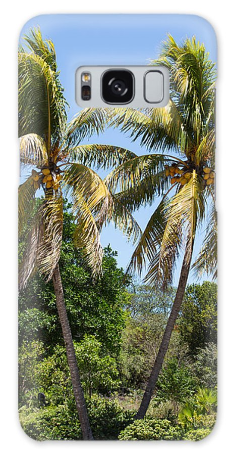 Sky Galaxy S8 Case featuring the photograph Coconut Palm Trees In Key West by John M Bailey