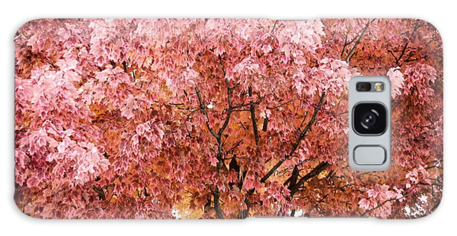 Autumn Galaxy S8 Case featuring the photograph Color In The Tree 03 by Thomas Woolworth