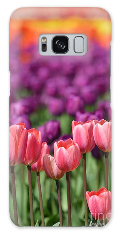 Pink Galaxy S8 Case featuring the photograph Color Spectrum by Jan Noblitt