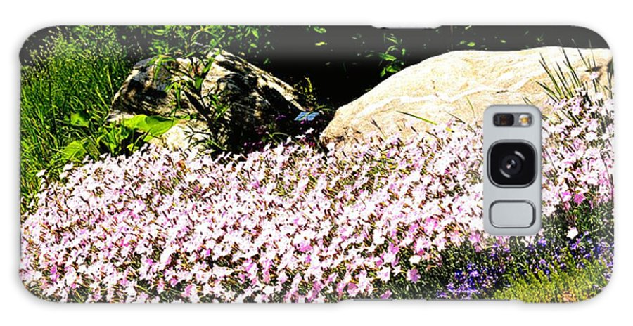 Wildflowers Galaxy S8 Case featuring the photograph Colorado Wild Flowers by Gerald Blaine
