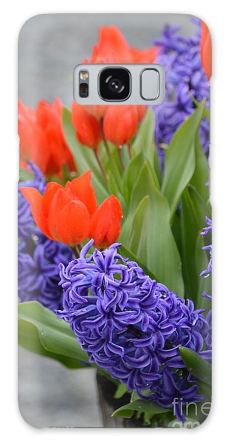 Tulips Galaxy S8 Case featuring the photograph Colorful Arrangement by Jan Noblitt