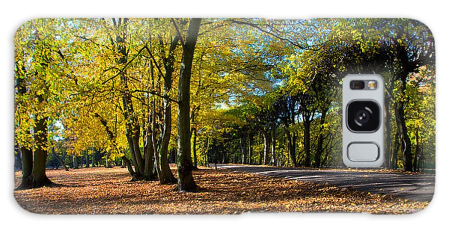 Fall Galaxy S8 Case featuring the photograph Colorful Fall Autumn Park by Michal Bednarek