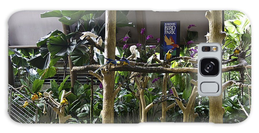 Asia Galaxy S8 Case featuring the photograph Colorful Macaws And Other Small Birds On Trees At An Exhibit by Ashish Agarwal
