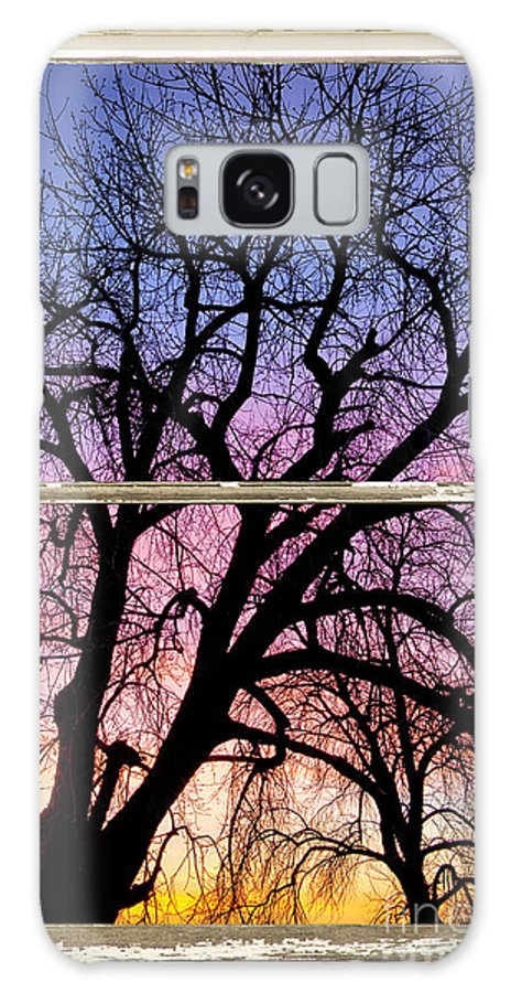 Window Galaxy S8 Case featuring the photograph Colorful Tree White Farm House Window Portrait View by James BO Insogna