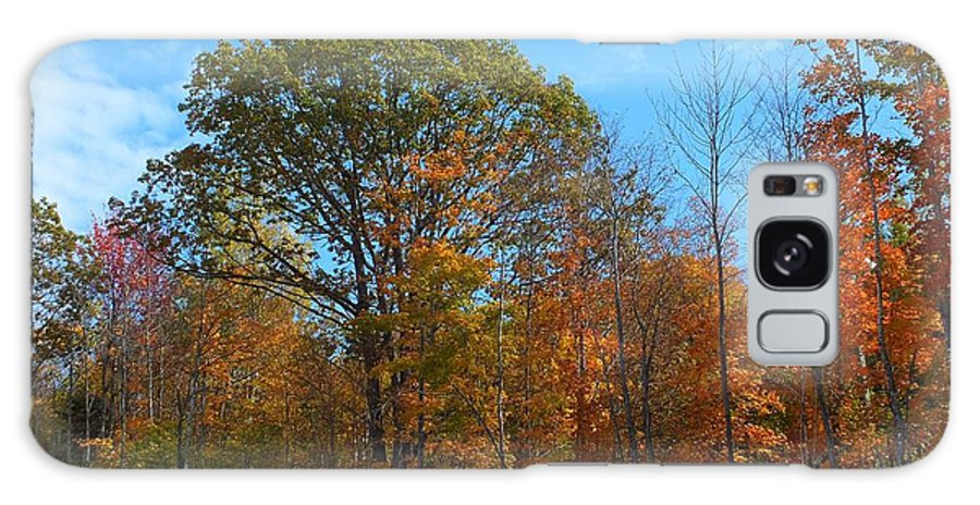New England Galaxy S8 Case featuring the photograph Colors Of Fall 1 by Gene Cyr