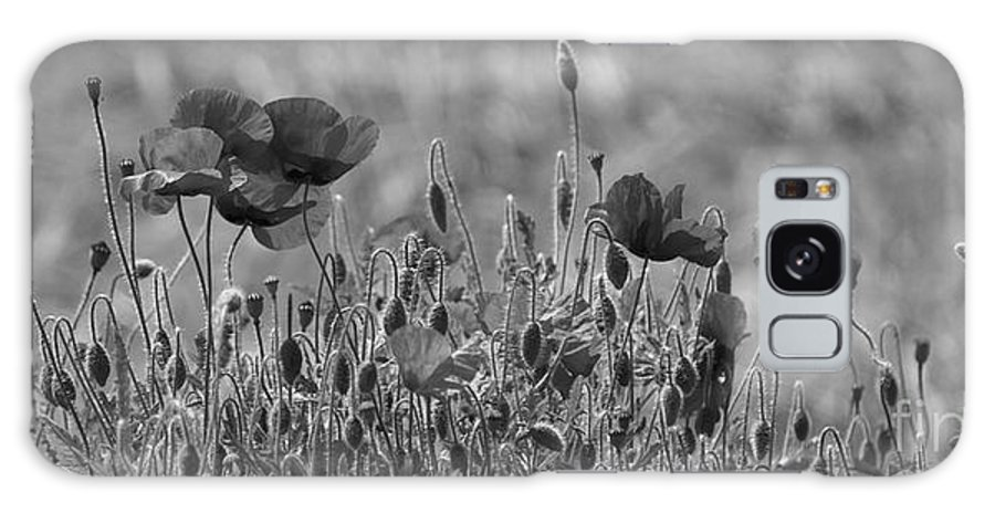 Poppies Galaxy S8 Case featuring the photograph Colour Blind Poppies 2 by Carol Lynch