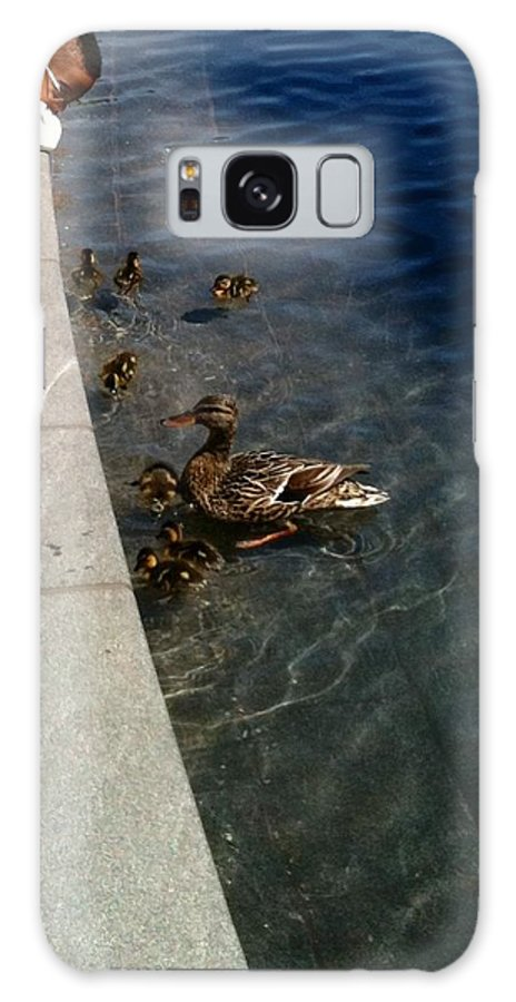 Ducks Galaxy S8 Case featuring the photograph Come On Over Here by Lois Ivancin Tavaf
