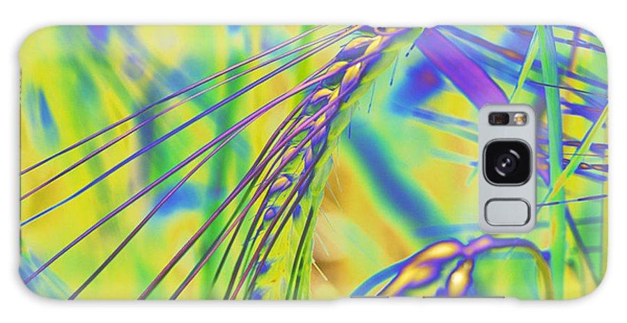 Corn Galaxy S8 Case featuring the digital art Corn by Carol Lynch