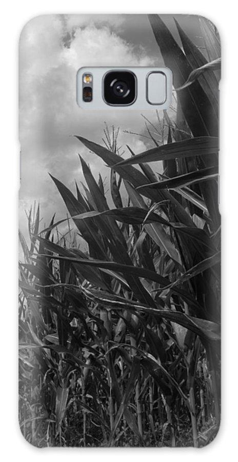 Landscape Galaxy S8 Case featuring the photograph Cornfield by Laura Corebello