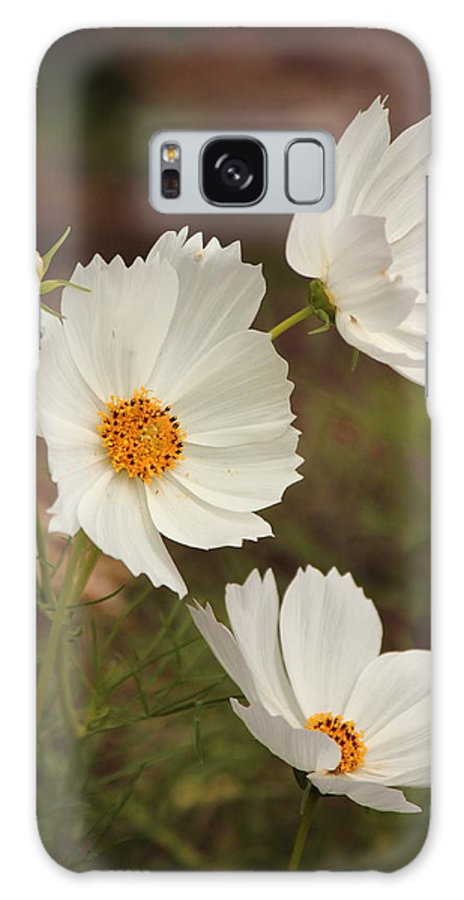 Cosmos Galaxy S8 Case featuring the photograph Cosmos by Karen Beasley