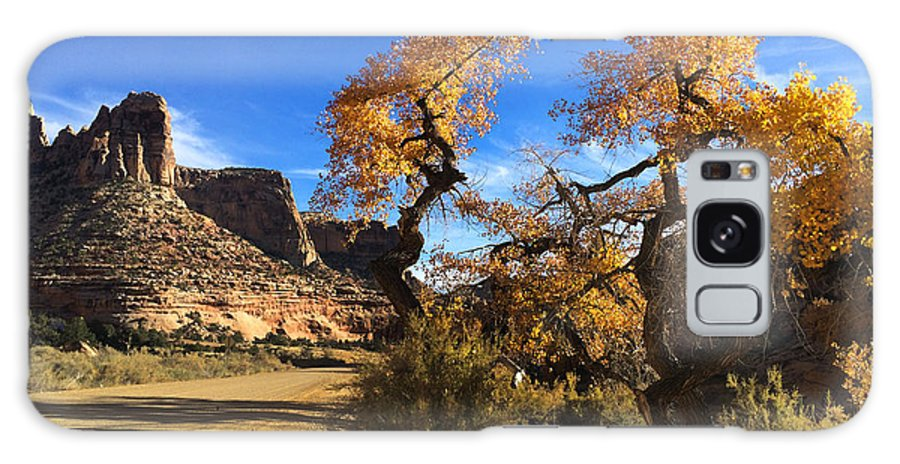 Buckhorn Wash Galaxy S8 Case featuring the photograph Cottonwoods In Buckhorn Wash 4059 by Ron Brown Photography