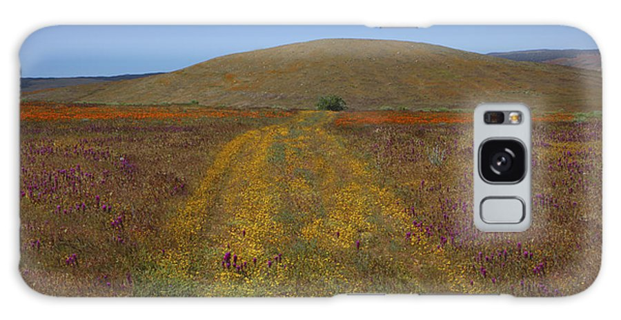 Antelope Galaxy S8 Case featuring the photograph Country Road by Susan Rovira