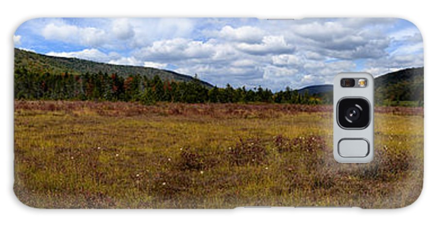 Cranberry Glades Botanical Area Galaxy S8 Case featuring the photograph Cranberry Glades Panoramic by Thomas R Fletcher