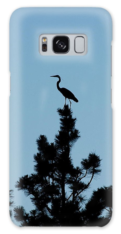 Galaxy S8 Case featuring the photograph Crane by Heather Farr