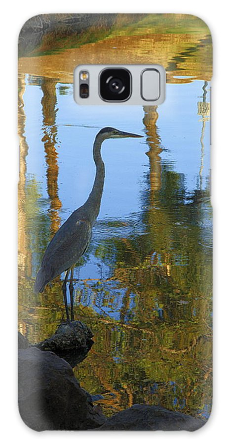 Nature Galaxy S8 Case featuring the photograph Crane Standing Still by Viktor Savchenko