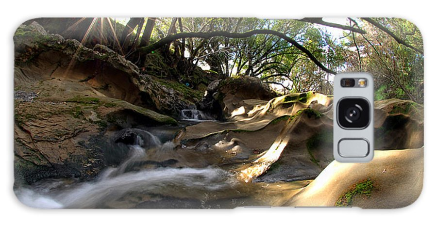 Landscape Galaxy S8 Case featuring the photograph Creekside Sunrise by Donna Blackhall