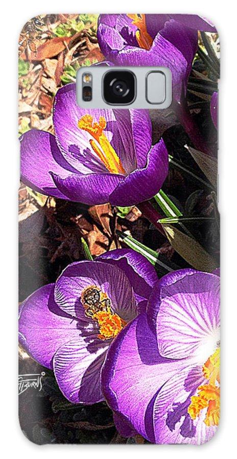 Honey Galaxy S8 Case featuring the photograph Crocus Nectar by GG Burns