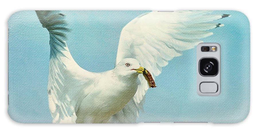 Seagull Galaxy S8 Case featuring the photograph Crust by Fraida Gutovich