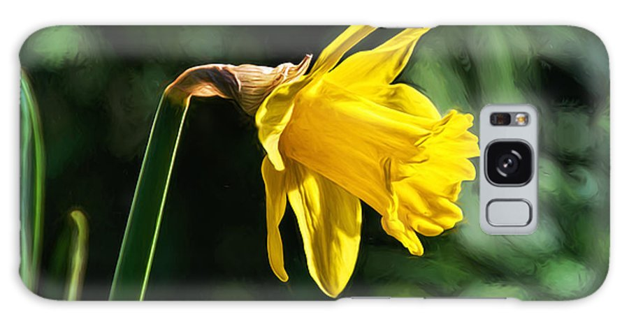 Daffodil Galaxy S8 Case featuring the photograph Daffodil - Impressions by Susie Peek