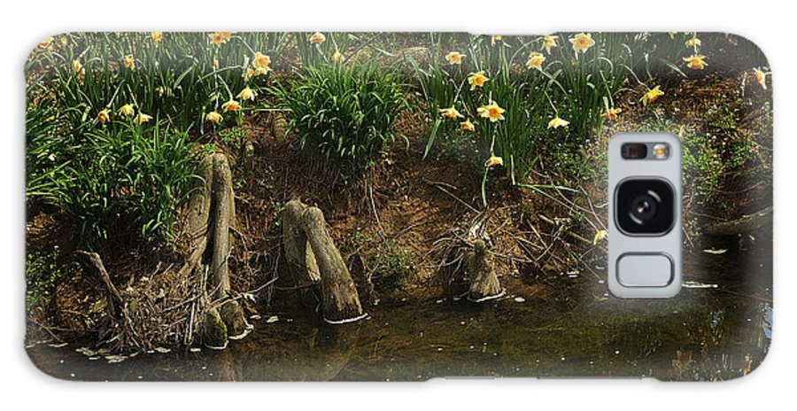 Daffodils Galaxy S8 Case featuring the photograph Daffodils By A Stream by George Taylor