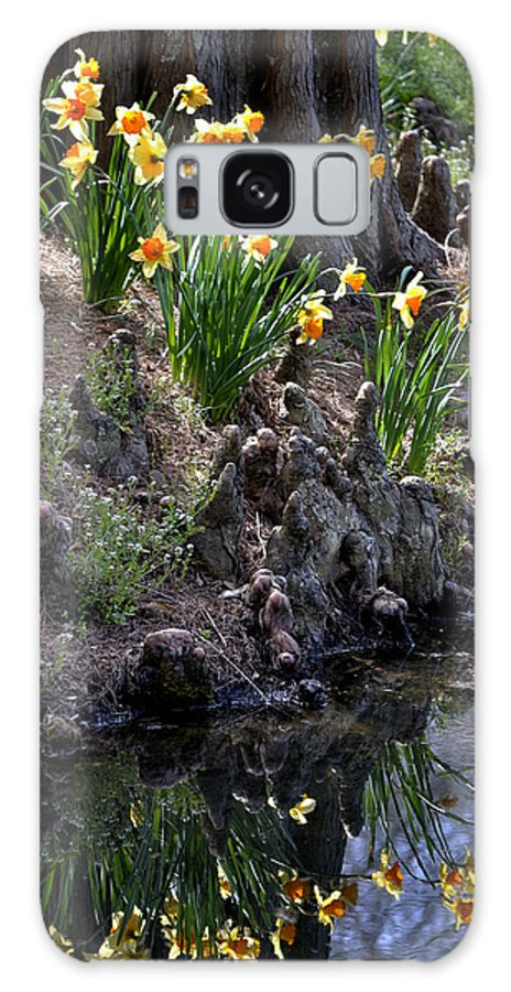 Daffodils Galaxy S8 Case featuring the photograph Daffodil's Reflections by George Taylor