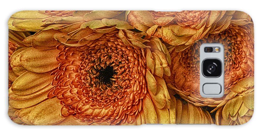 Daisy Galaxy Case featuring the photograph Daisy Daisy by Keith Gondron